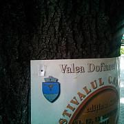 festivalul cascavelei de la valea doftanei promoveaza distrugerea copacilor