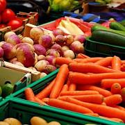 agricultura salveaza declinul exporturilor catre italia