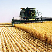 americanii s-au apucat de agricultura in romania
