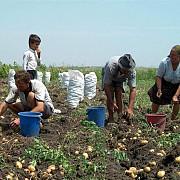 credite pentru agricultori pana vin subventiile