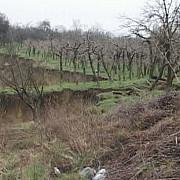 ploile au adus alunecari de teren in prahova