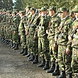 in bucuresti si in judetul ilfov rezervistii au fost mobilizati la unitatile militare