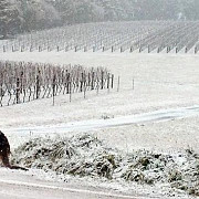 iarna grea in australia