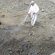 bacteriile folosite la decontaminarea terenului unei foste fabrici de hartie