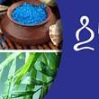 deschiderea inscrierilor la body mind spirit festival constanta 7-9 iunie 2013