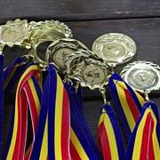 olimpicii romani sunt cei mai buni din europa la chimie