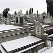 hotii de fier vechi ataca cimitirele