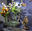 podea interactiva la muzeul de stiintele naturii prahova