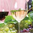 rusia ameninta moldova cu embargo asupra vinurilor