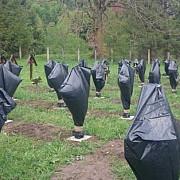 scandalul de la valea uzului continua prefectul de harghita ataca in instanta decizia primariei sanmartin de a interzice accesul in cimitirul eroilor