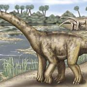 un nou tip de dinozaur descoperit in franta botezat dinozaurul tigan