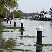 dunarea a depasit cotele de inundatii
