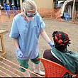 ebola aduce stare de urgenta in nigeria