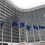 cainii maidanezi nu sunt de competenta comisiei europene