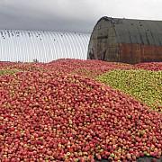 locuri de munca intr-o fabrica de fructe din germania