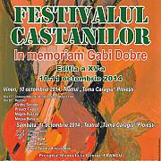 concursul national de interpretare a muzicii folk festivalul castanilor