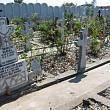 cimitirul-fantoma de la marginea bucurestiului 5000 de copii bagati in gropi comune in pipera