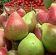 ce propune dublarea cantitatilor de fructe importate din republica moldova