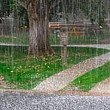 informare de vreme rea se intorc ploile si ninsorile