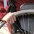 ce se intampla cu comisia de handicap din prahova