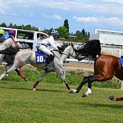 eleganta cailor de galop la hipodromul din ploiesti afla cine a castigat cursele de duminica