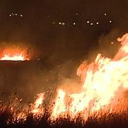 incendiu in delta dunarii