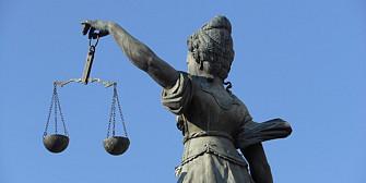 hotul striga hotii condamnata pentru inselaciune presedinta partidului reformator timis