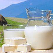 proprietarii lactatebradet propun crearea unei companii de lactate la care sa participe toti cetatenii