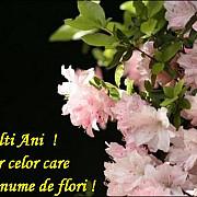 duminica floriilor duminica bucuroasa a intrarii lui iisus in ierusalim