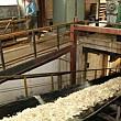 fabrica zaharul ludus cumparata de cel mai mare producator din franta