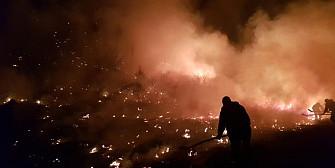 la magurele in prahova autoritatile se lupta cu incendiile de vegetatie foto