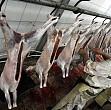 aproape 25 tone de carne de miel confiscate in capitala