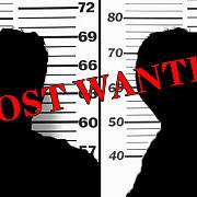 romanii in topul most wanted al europol