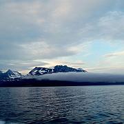 polul nord inconjurat de gunoaie miliarde de obiecte de plastic au ajuns in apele oceanului arctic