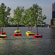 padure plutitoare la rotterdam