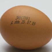 oua interzise de la comercializate din ianuarie 2012