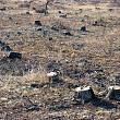 peste 1900 de localitati din romania vulnerabile la poluarea cu nitrati