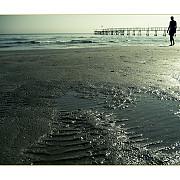 petrol in apa marii pe raza plajei din mamaia