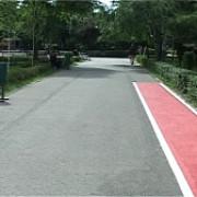 pista de jogging in parcul mihai viteazul