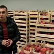 livezile cu mere ale romaniei readuse la viata de investitori