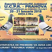 inedit expozitie columbofila in premiera la paulesti