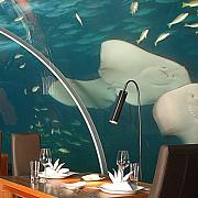 cele mai ciudate restaurante din lume