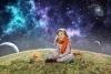 povesti incredibile despre reincarnare