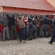 gheorghieni bataie cu bate si topoare
