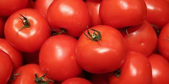 rectorul universitatii de stiinte agricole despre cum sunt vopsite rosiile cu o super tehnologie