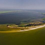 insula sacalin in pericol din cauza scurgerilor de petrol