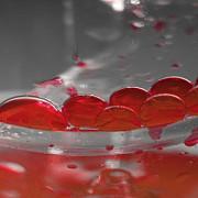 grupa de sange iti spune la ce boli esti predispus