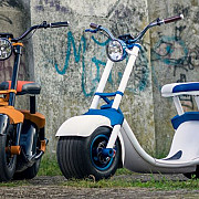 scuterul romanesc este si frumos si destept