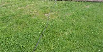 video primarul alionte doarme stalpi de electricitate cazuti de patru zile pe terenul de fotbal de la podenii noi