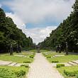 centenarul marii uniri aduce parcului constantin stere statut de parc de interes national